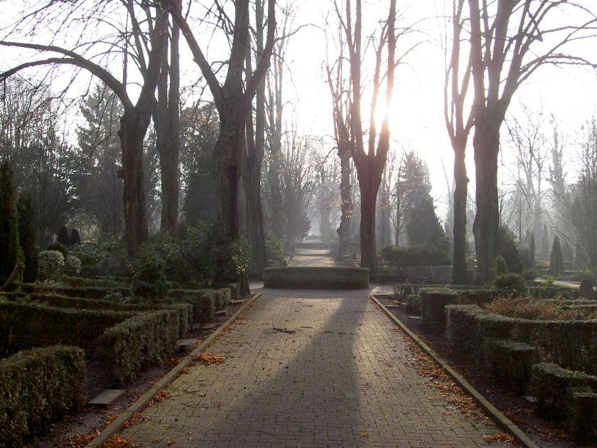 Brunnenallee auf dem Lübbecker Friedhof (Foto: Jörg Seyffarth)